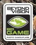 BeyondVision Big Game