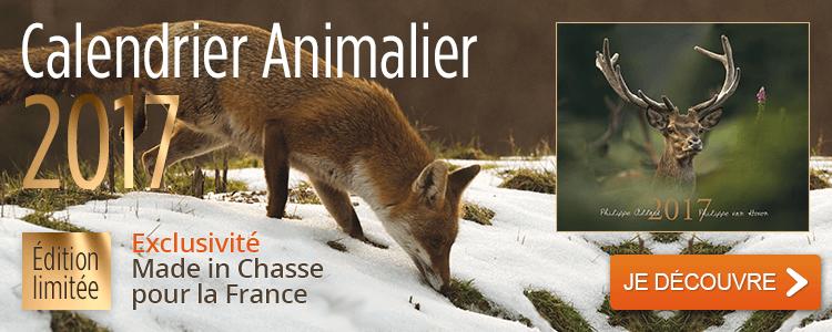 Calendrier animalier 2017