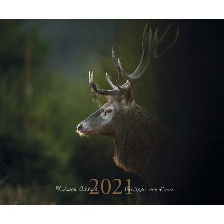 Calendrier animalier 2021   Calendriers | Made in Chasse