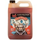 Attractant sanglier PigOut