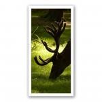 Plaque photo décorative ALU Cerf en velours au gagnage