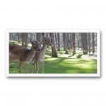 Plaque photo décorative ALU Faons en forêt
