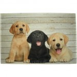 Set de table Labradors
