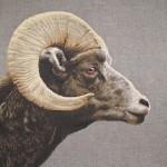Grand coussin Mouflon foncé