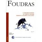 Le bonhomme de Maurevert - Marquis de Foudras N° 10
