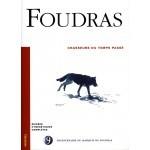 Chasseurs du temps passé - Marquis de Foudras N° 9