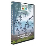 Palombes, pigeons, une passion