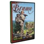 Brame, chasse à l'arc dans les Pyrénées