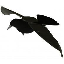 Appelant Corbeau Step-Flap