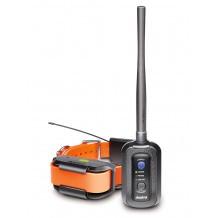 Système dressage repérage GPS Dogtra Pathfinder