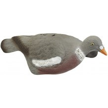 Pack 6 appelants Pigeon anglais demi-coque