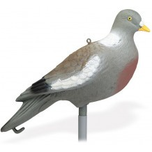Pack 12 appelants Pigeon posé