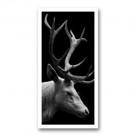 Plaque photo décorative PVC Cerf en portrait
