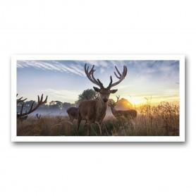Plaque photo décorative ALU Cerfs en velours