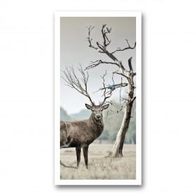 Plaque photo décorative ALU Bois de cerf