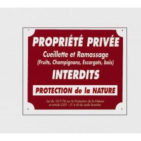 Pack 10 pancartes de chasse PROPRIÉTÉ PRIVÉE / 2
