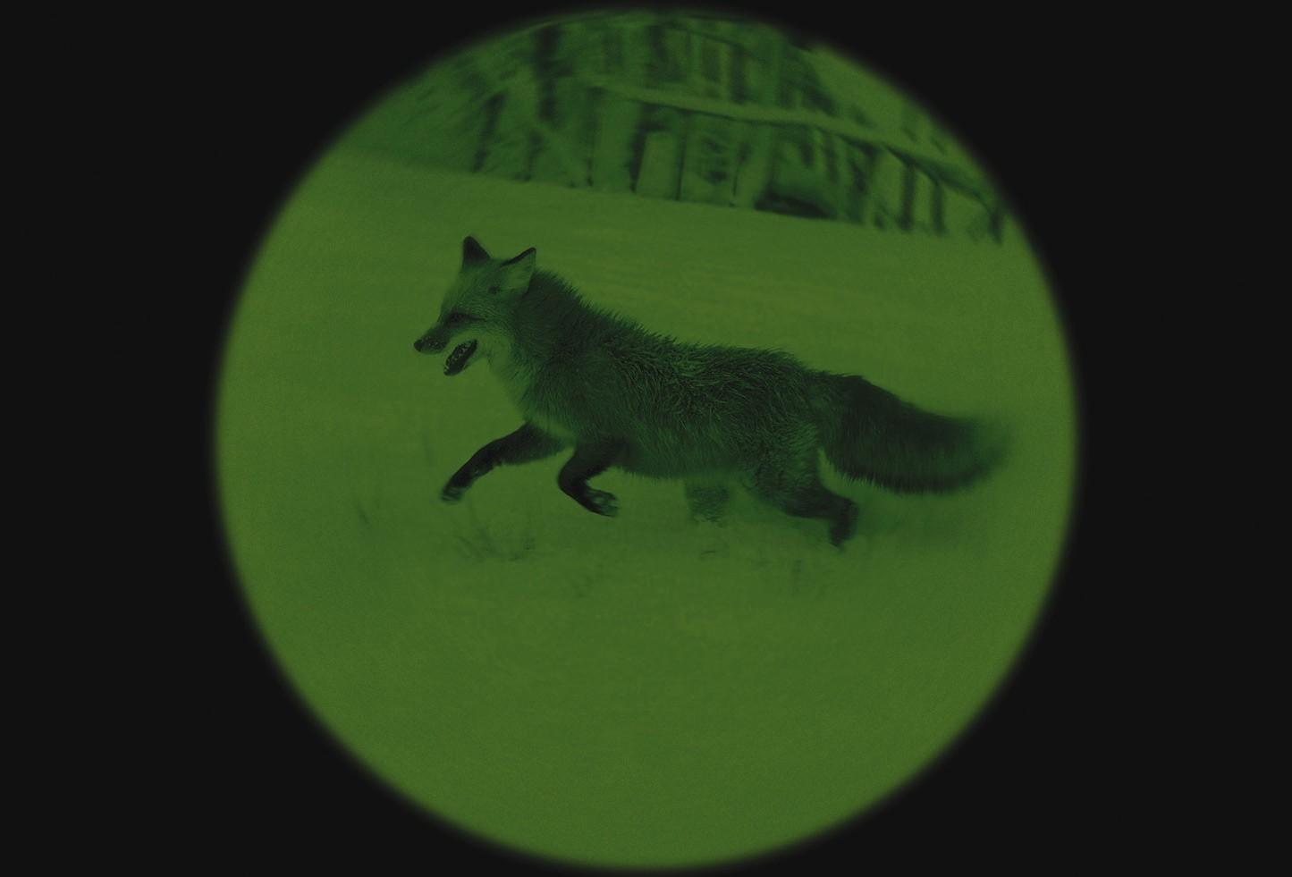 monoculaire vision nocturne yukon patrol 4x50 jumelles vision nocturne made in chasse. Black Bedroom Furniture Sets. Home Design Ideas