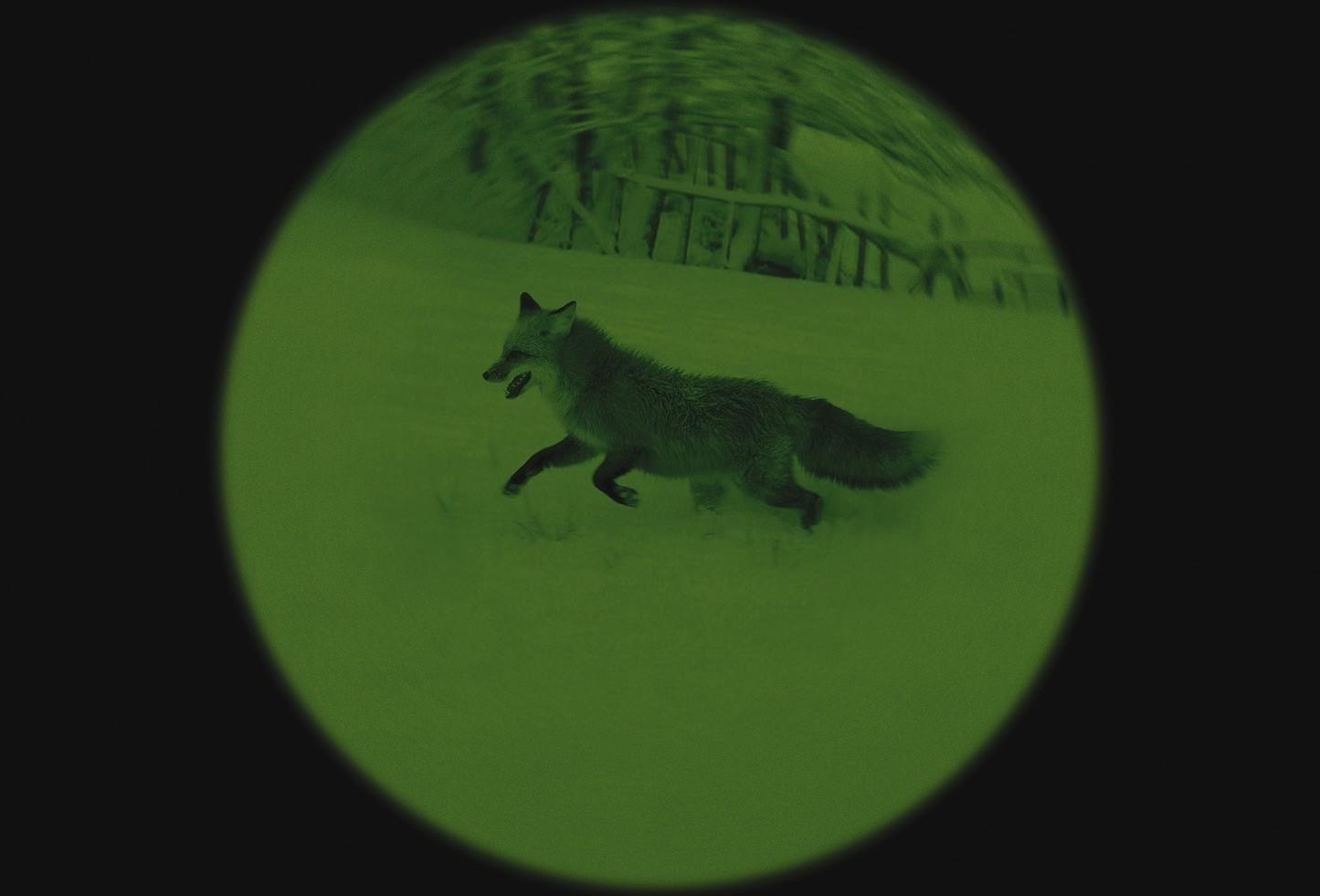 jumelles vision nocturne yukon tracker 3x42 jumelles vision nocturne made in chasse. Black Bedroom Furniture Sets. Home Design Ideas