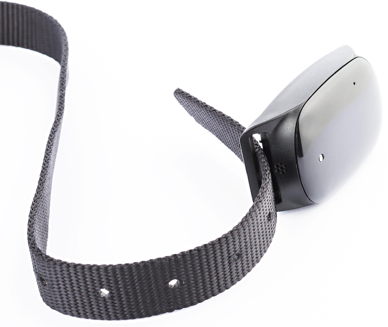 collier de rep rage pour chien geovie plug trace. Black Bedroom Furniture Sets. Home Design Ideas