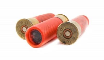 Cartouches calibre 16