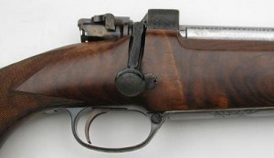 Carabines de chasse